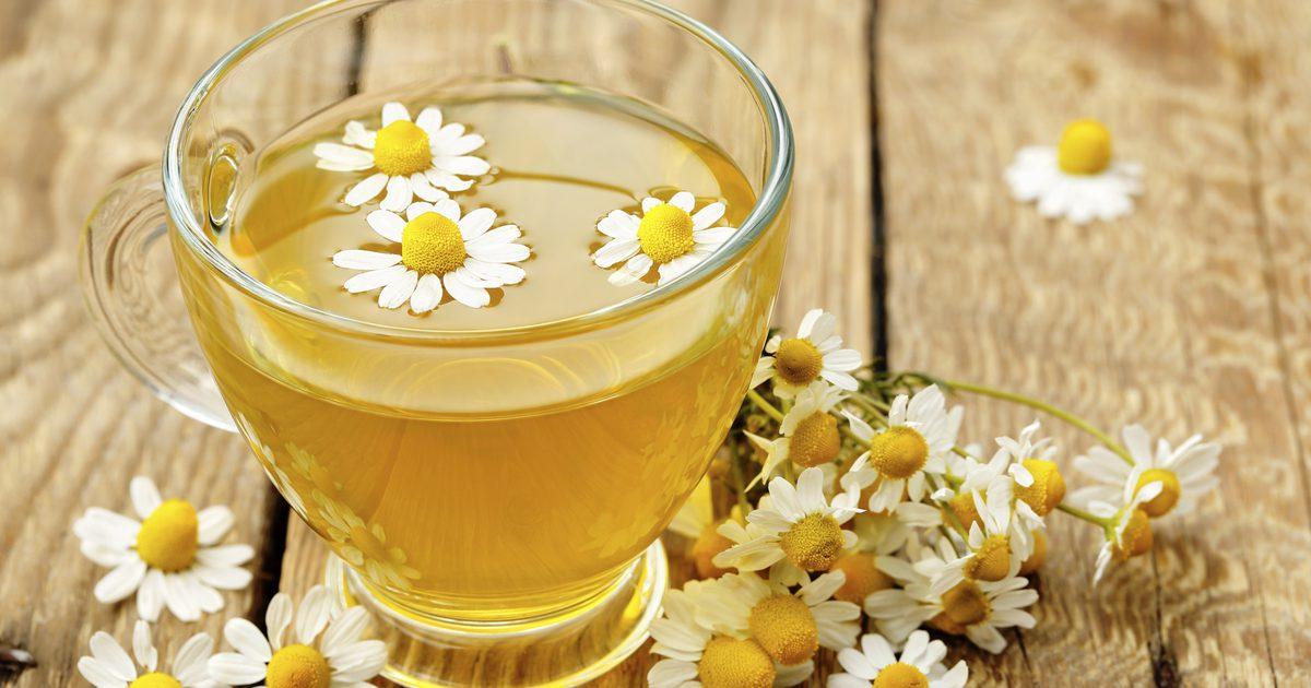 5 Tanaman Obat Herbal Cegah Penyakit Radang Sendi