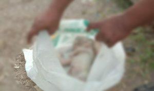 Mayat Bayi di Aliran Sungai Deli