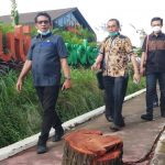 Penebangan Pohon Depan Mutia Garden Kepentingan Pengusaha