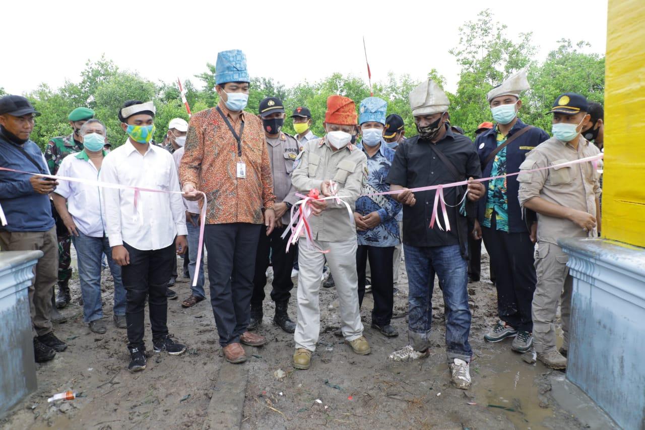Kemenko Maritim dan Investasi Resmikan Nursery Mangrove di Asahan