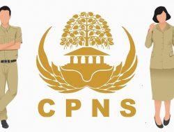 Siap – siap Daftar CPNS 2021 untuk SMK/Sederajat